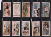 Tobacco Cigarette cards Game Bird & Wild Fowl 1927